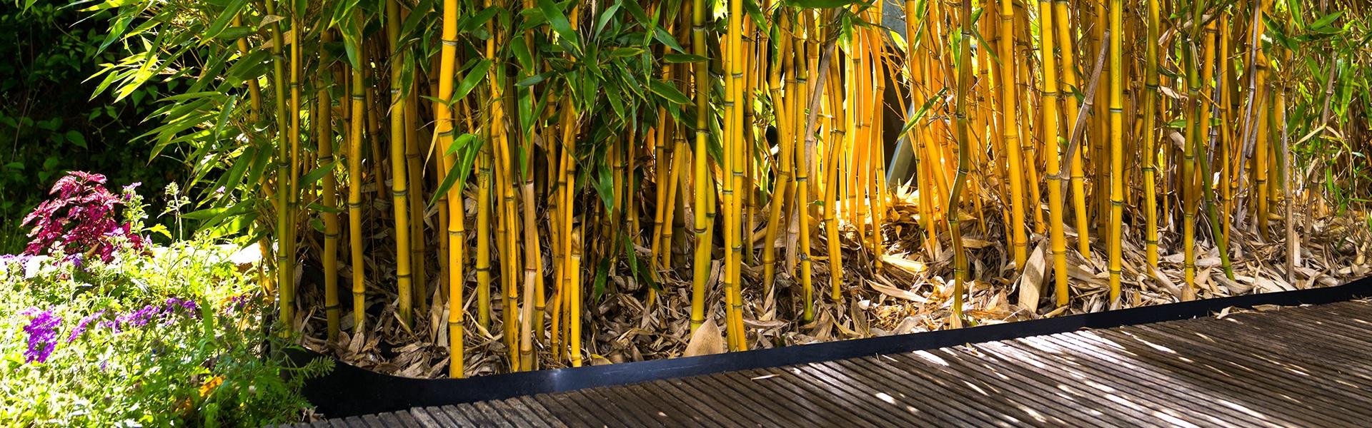 Bambus Wurzelsperre FVG